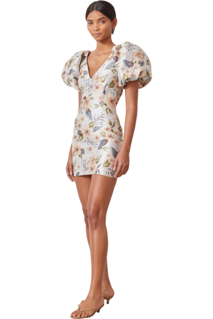 Rent Bec & Bridge Fleurette V Dress