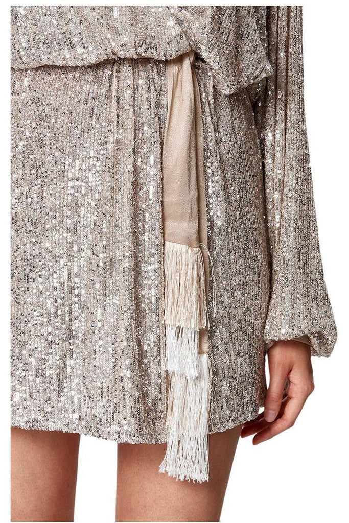 Rent Winona Broadway Short Sequin Dress Silver