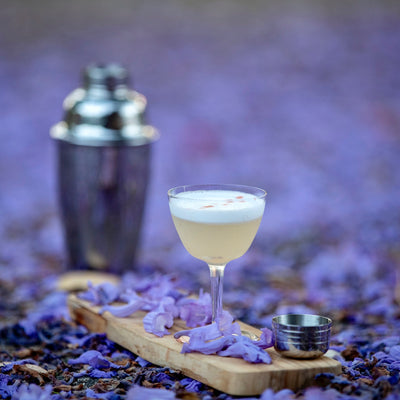 Pisco Sour with Allspice-Ginger-Lime