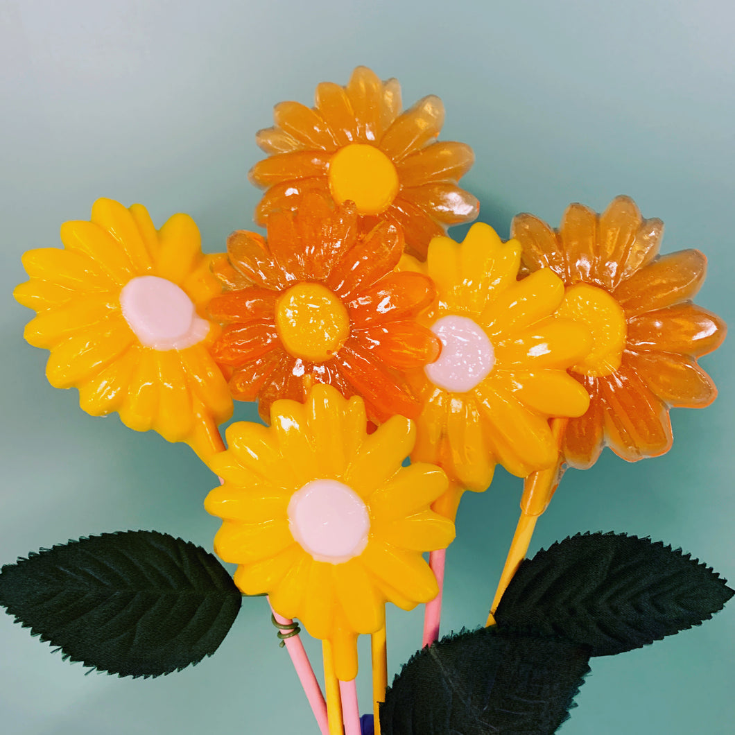 Hard Candy Daisies