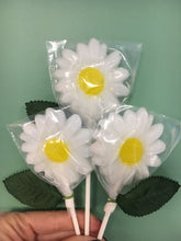 Load image into Gallery viewer, Hard Candy Daisies