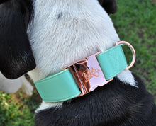 Load image into Gallery viewer, Mint Collar - BK Boutique Pets