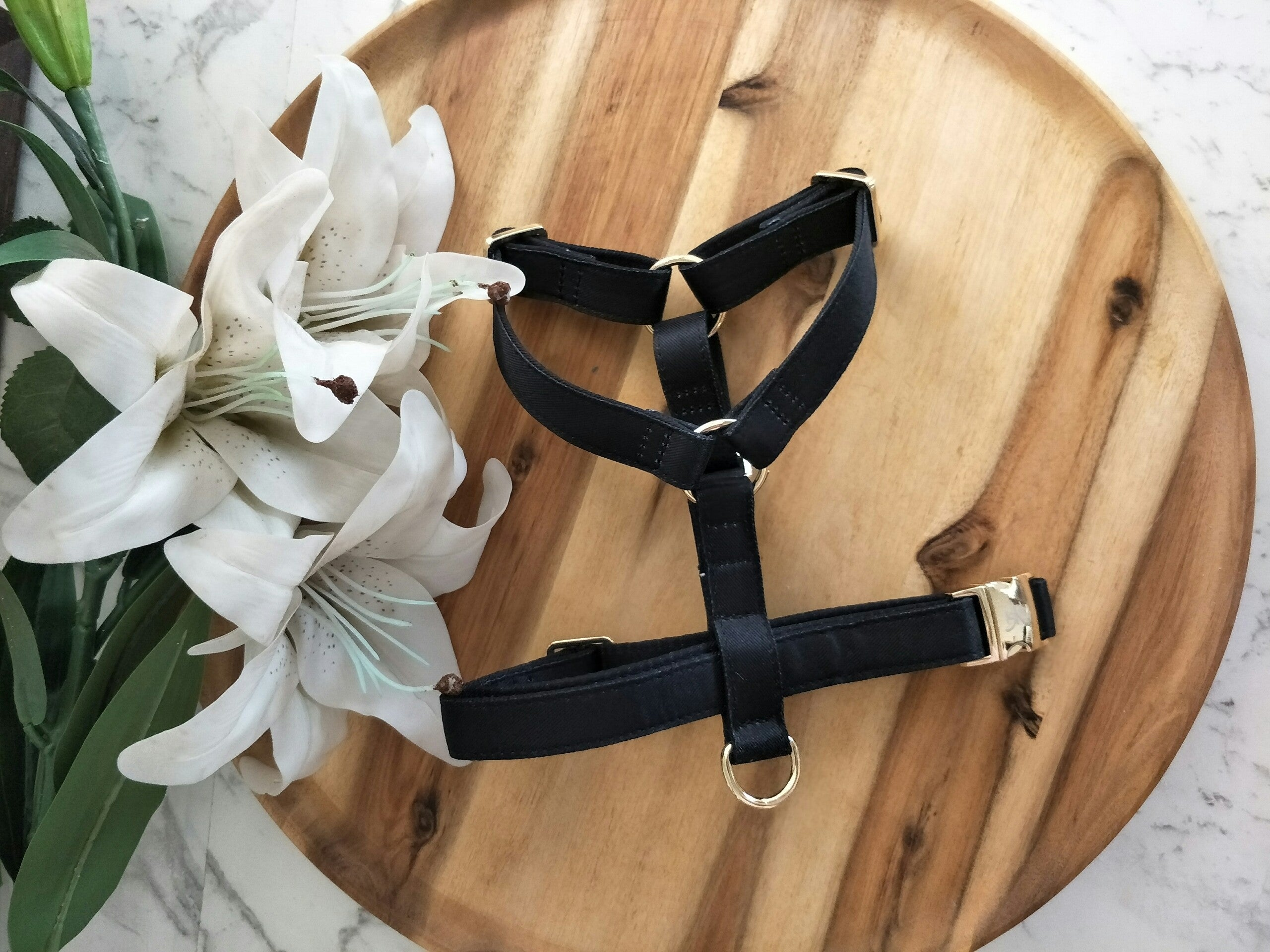 Black & Gold Harness - BK Boutique Pets