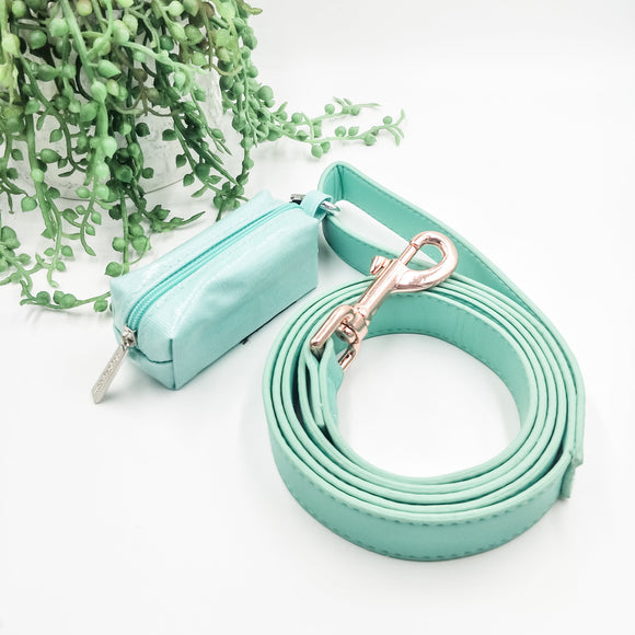 Mint - Leather Dog Leash