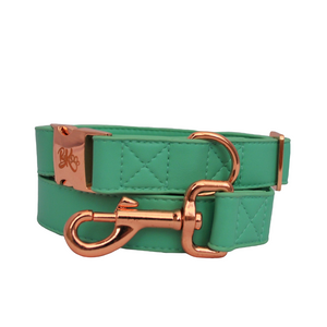 Mint Green Dog Collar - BK Boutique Pets