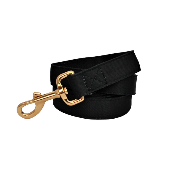Black dog leash