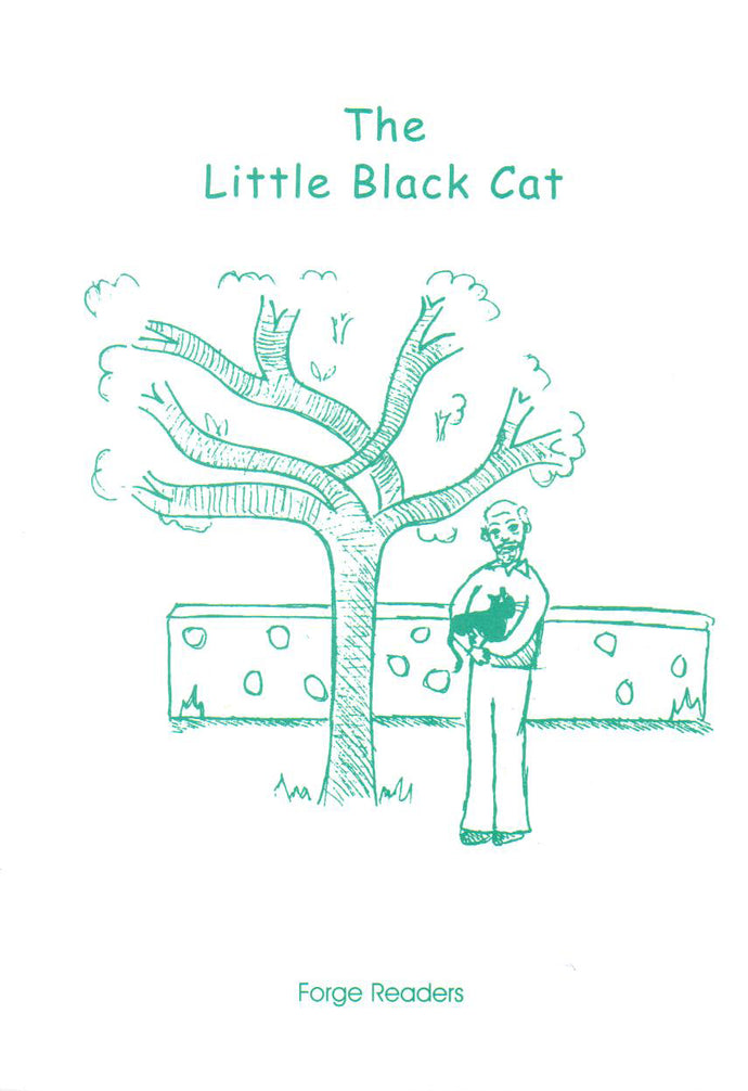 The Little Black Cat