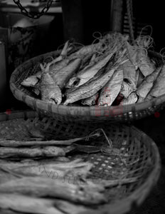 Fish Basket | Photographic Print