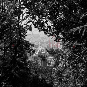 A City in Nature | Photographic Print