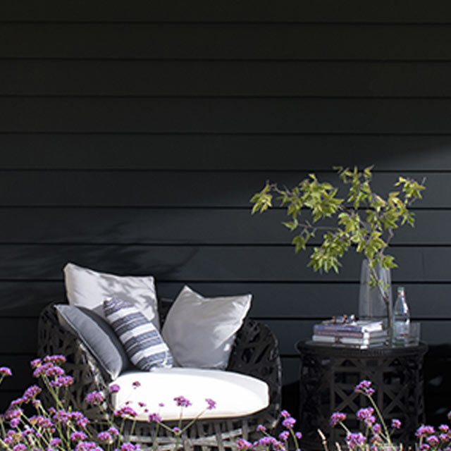 House exterior siding painted in Black Satin Regal Select Paint color