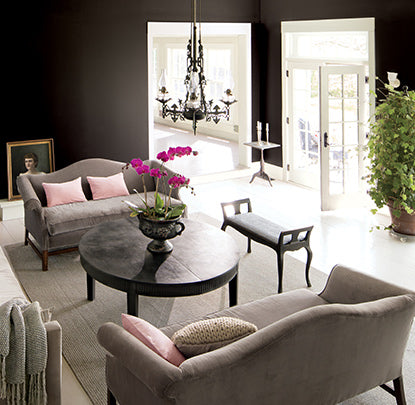 Living room walls painted in Black Beauty Aura Paint color