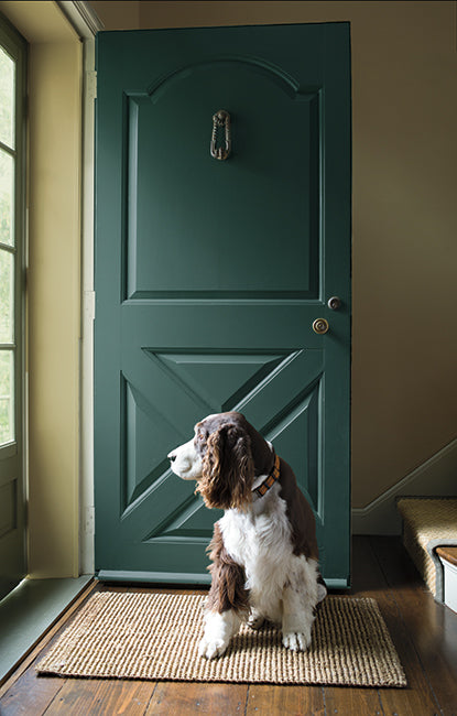 An all green-painted country style entryway with rustic hardwood floors and windowed screen door.