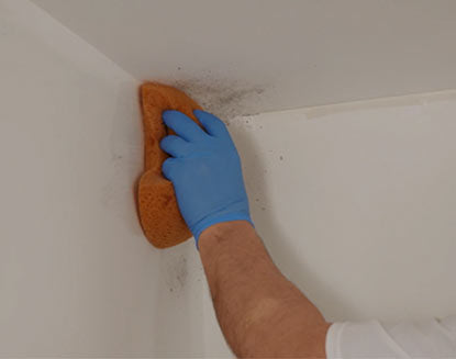 How to remove mildew to prepare wall for painting.