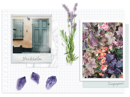 How environment inspires color of the year choice