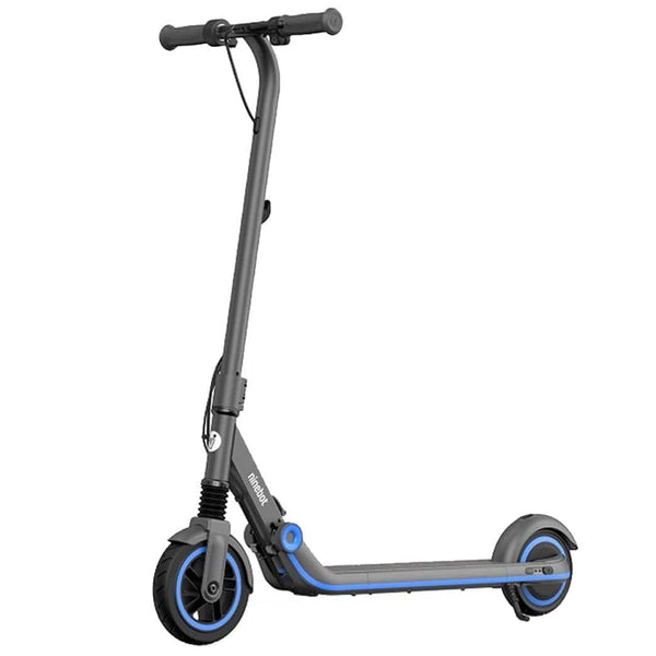 Segway Ninebot Zing E10 Kids Electric Scooter