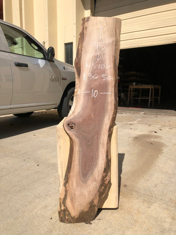 Black Walnut Live Edge Slab Kansas City