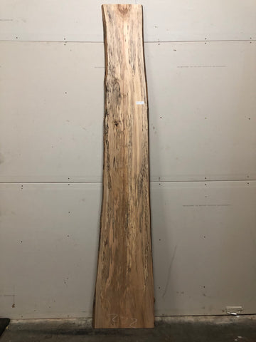 Live Edge Surfaced Spalted Maple Slab Kansas City