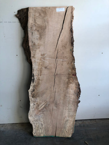 Live Edge Spalted Maple Kiln Dried Hobby Slab Kansas City