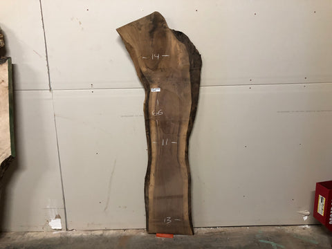 "Black Walnut (1141)  66"" L x 11-14"" W x 1.25"" T"