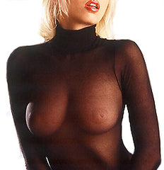sheer turtleneck shirt