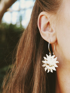 Anaei earrings