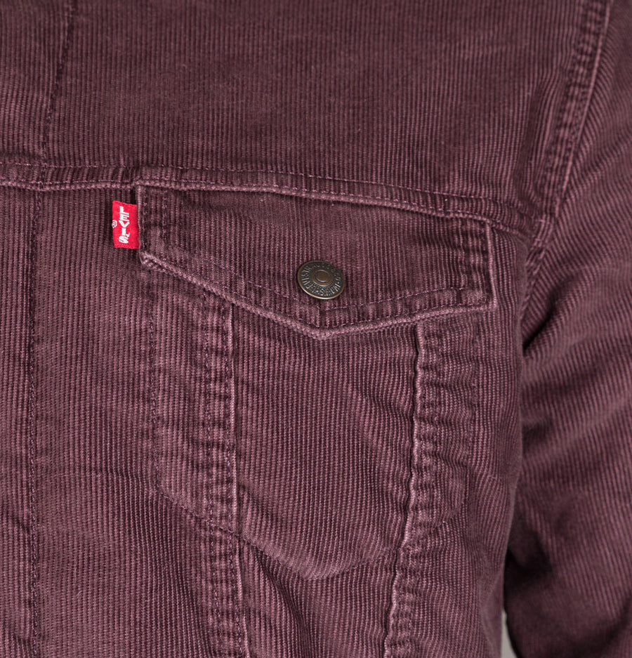 Levi's® Type 3 Sherpa Cord Trucker All Spice
