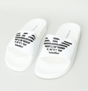 Large Logo Slides