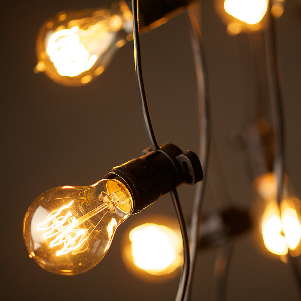 Festoon Lights - Edison Globes - 20m