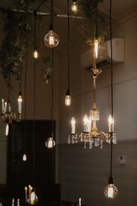 Festoon String - Drop Bulb - 20m