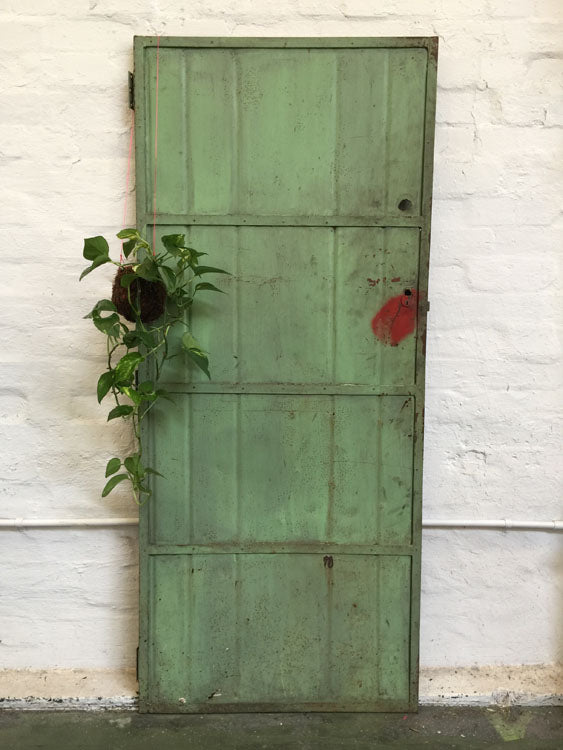 Metal door - green