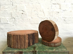 Wood Slices – various sizes and heights