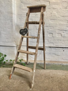 Ladder - Timber Painters