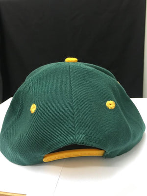NFL GreenBay Packers Supporters Cap