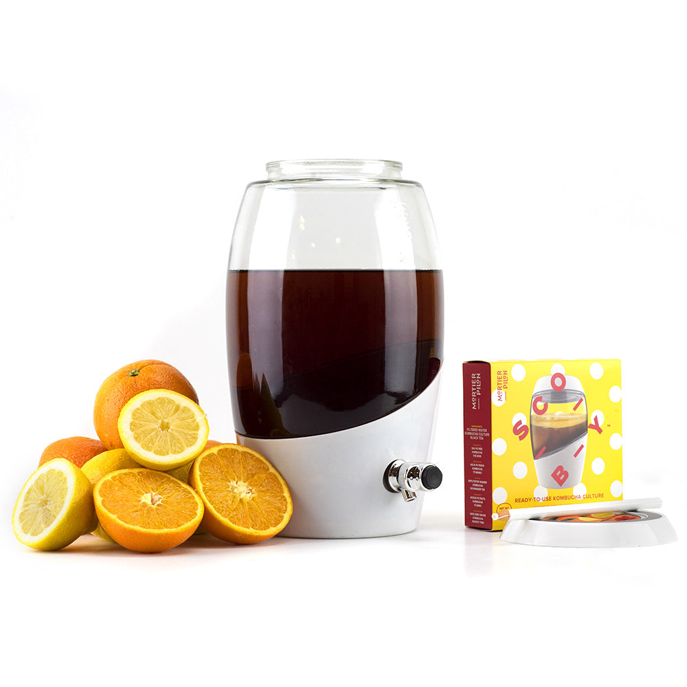 Kombucha Starter Kit with Glass Kombucha Crock