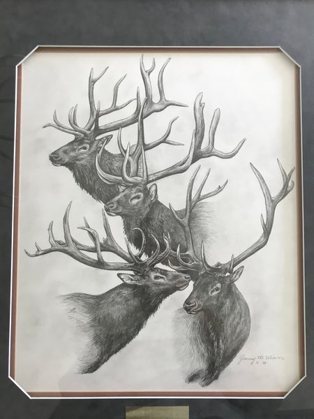 Antlers Southwest Collection