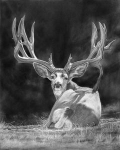 """Center Stage"" Buck Norris PRINTS"