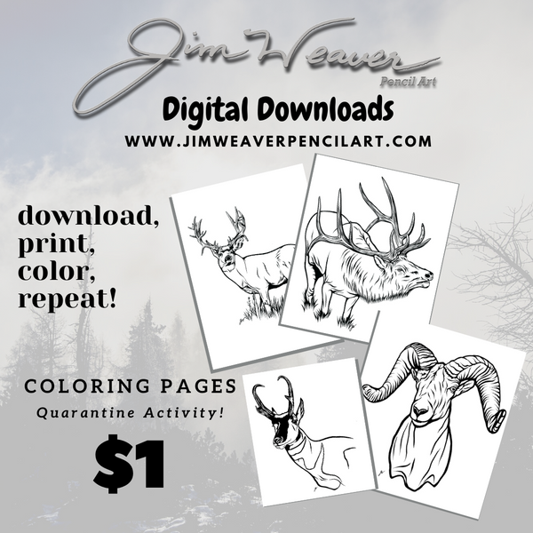 Coloring Page Digital Downloads