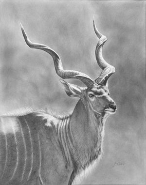 "Open image in slideshow, ""Kudu"" prints"