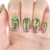 Leopard Flower Pattern Circle Nail Art Stamping Plate BBB-013 (US Warehouse)