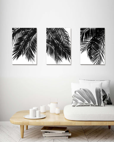 Black Palm Tree Leaves Set of 3