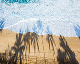 Palm Tree shadow on the shore