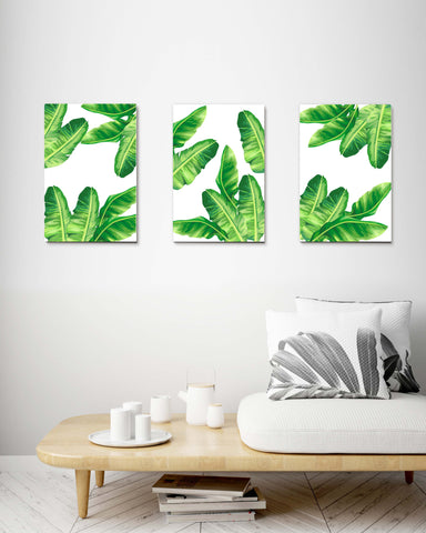 Tropical Palm Leaves set of 3