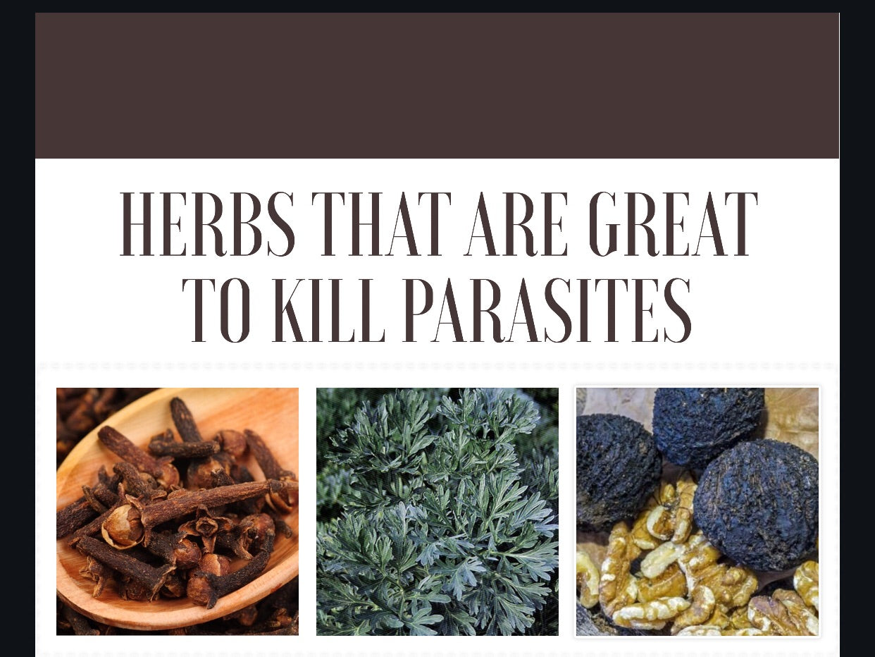14 Days Parasite Cleanse