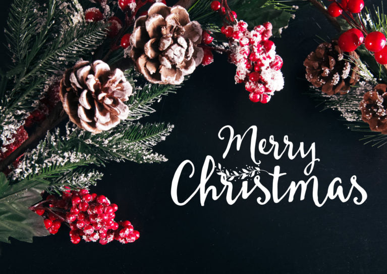 Merry Christmas from Breeo Industries!