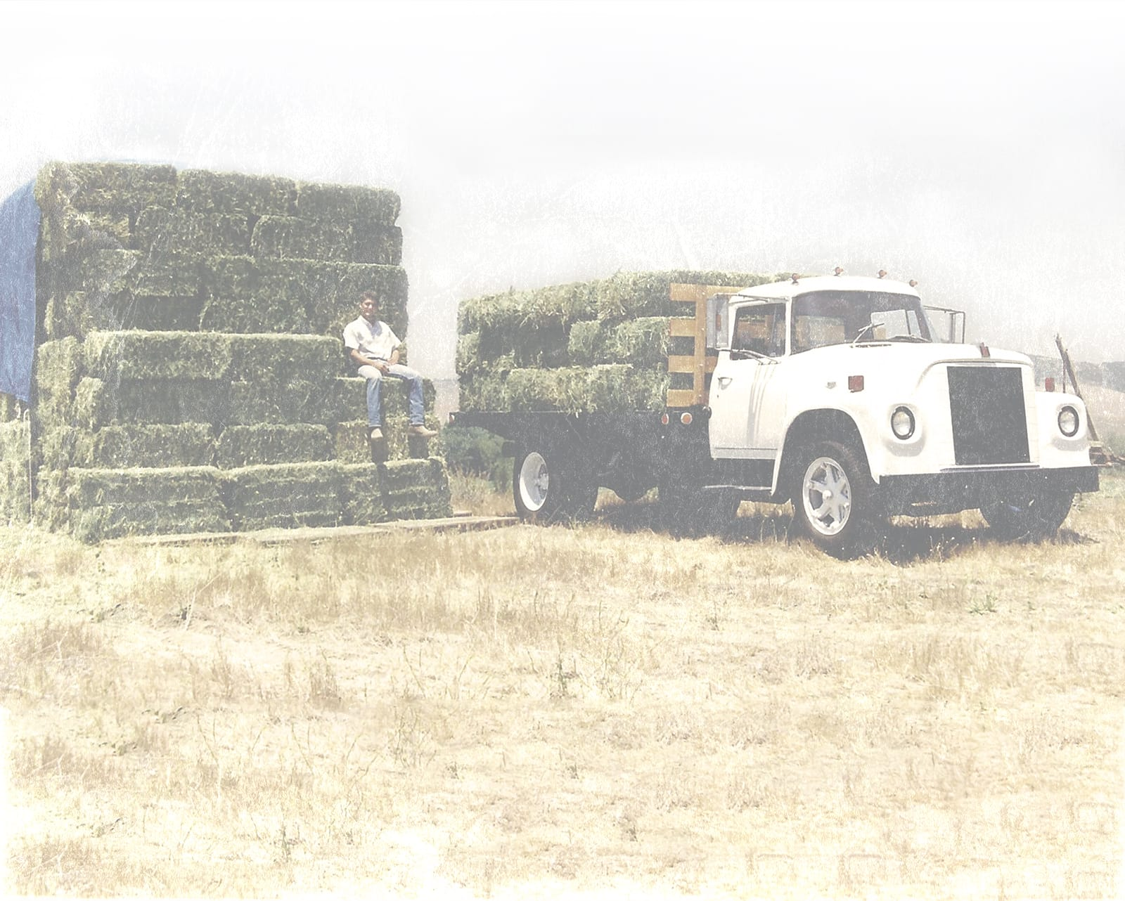 It all started with a bale of hay and a pickup truck