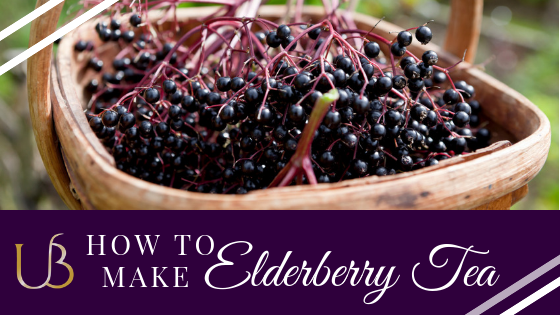 How to Make an Upful Elderberry Syrup (Powerful Alkaline Remedy)