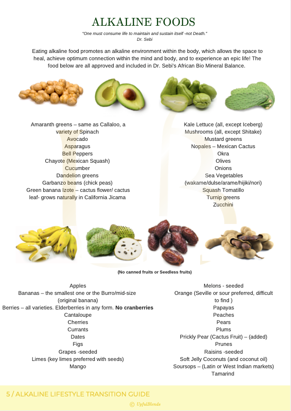 Alkaline Lifestyle Transition Guide (Conscious Plant Based)