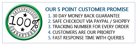 5point-customer-promise