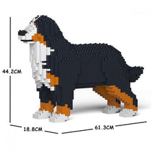 Load image into Gallery viewer, Bernese Mountain Dog 01S / 01C
