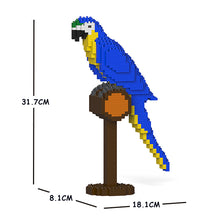 Load image into Gallery viewer, Blue-and-Gold Macaw 01S